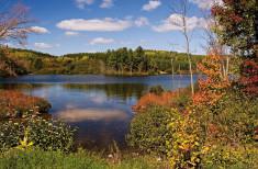 Bild 6 - A Taste of Ontario