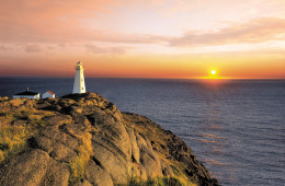 Undiscovered Newfoundland
