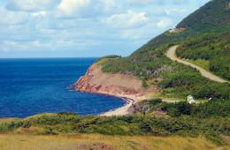 Wild Labrador and Newfoundland