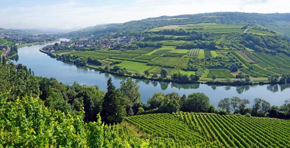 La région viticole de la Moselle