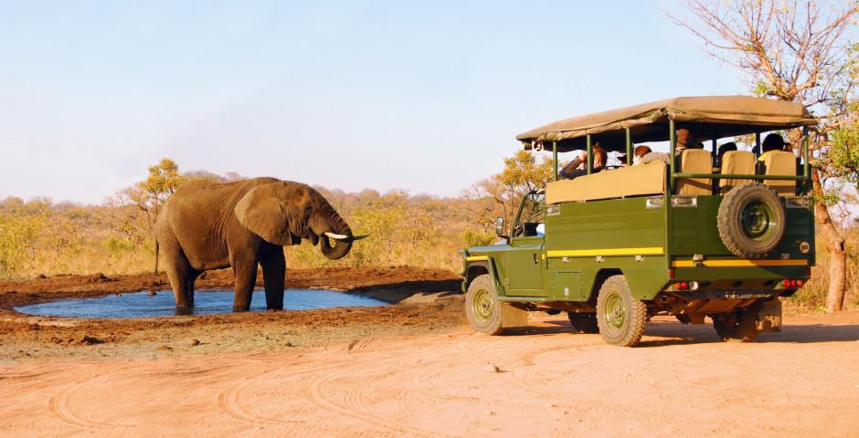 Parc national Kruger et environs