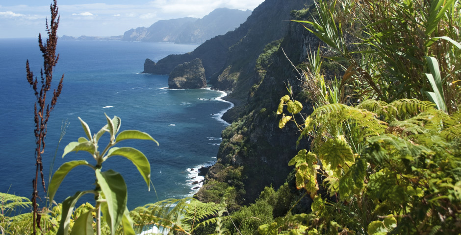 Fly & Drive Madeira