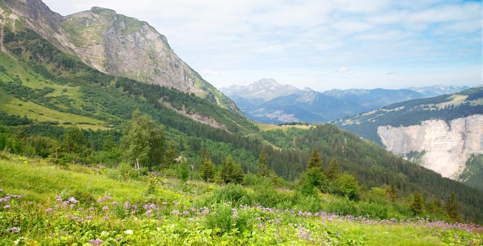 Berglandschaft im Sommer - Morzine