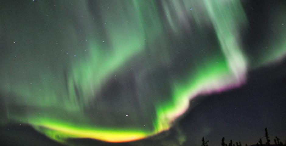 Alaska Winter Experience