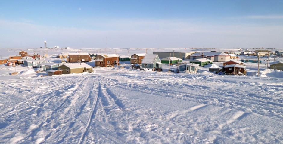 Arctic Winter Explorer