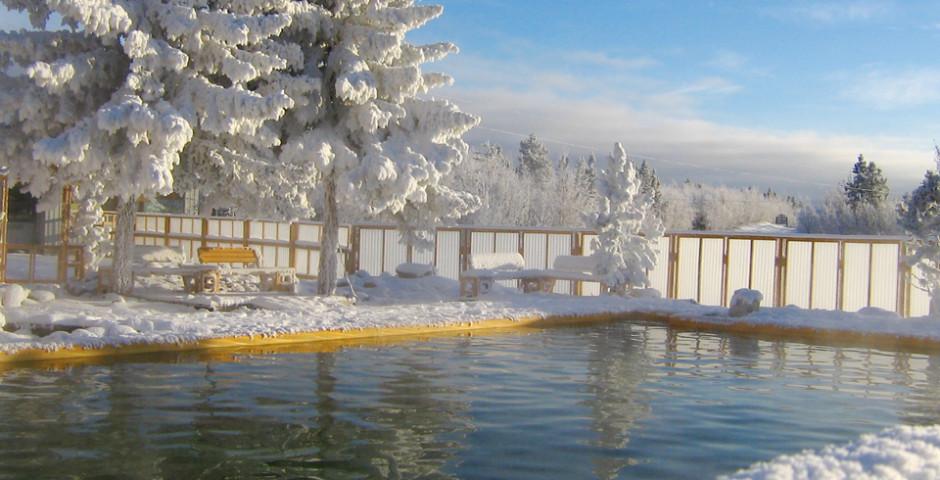 Yukon Winter Dream