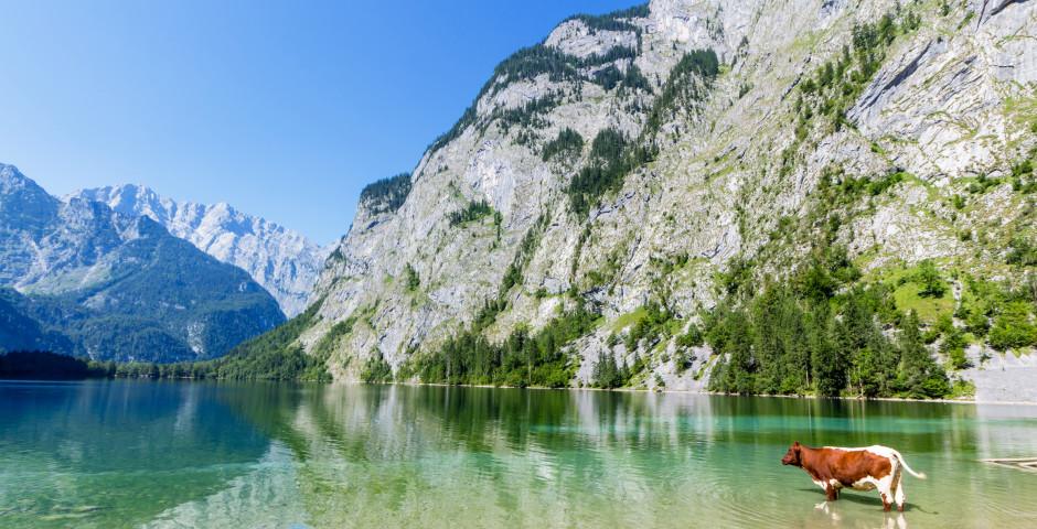Le Königssee dans le Pays-de-Berchtesgaden - Berchtesgaden
