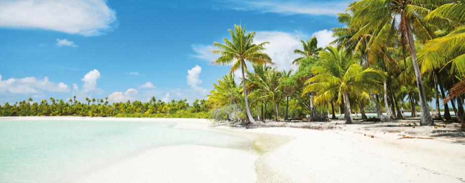 Traumstrände weltweit Palmen und Sandstrand