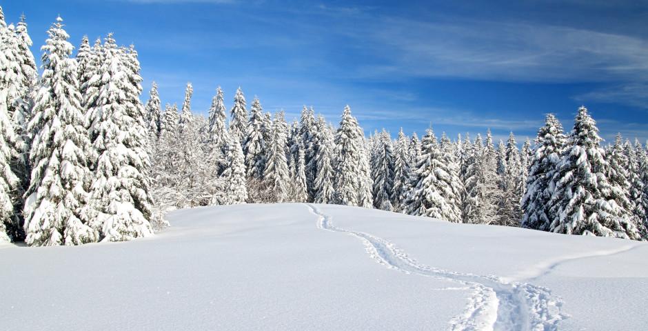 Winter im Jura