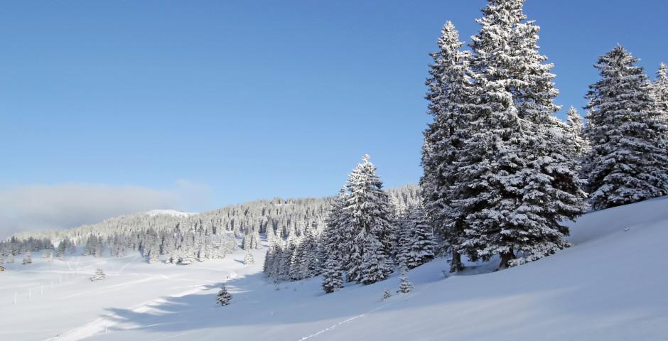 Winterlandschaft im Jura