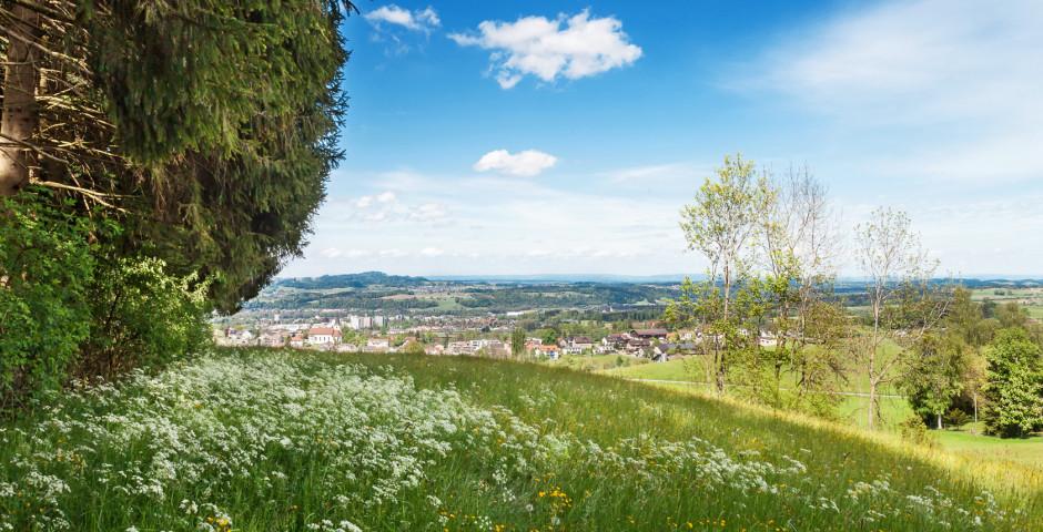 Naturlandschaft im Kanton St. Gallen - St. Gallen - Bodensee