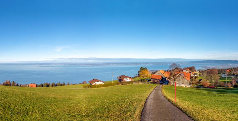 Blick auf den Bodensee - St. Gallen - Bodensee
