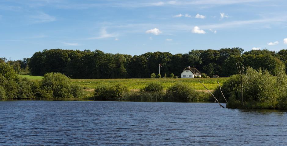 Lac naturel près de Billund