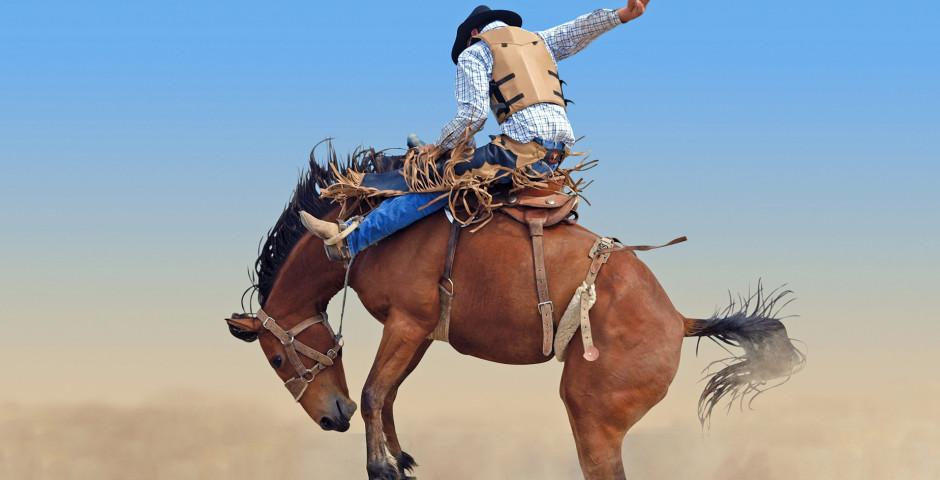 Cowboy - Cheyenne