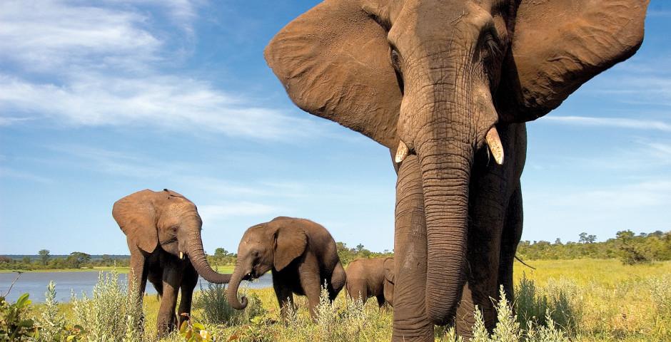 Faszination Südafrika und Namibia