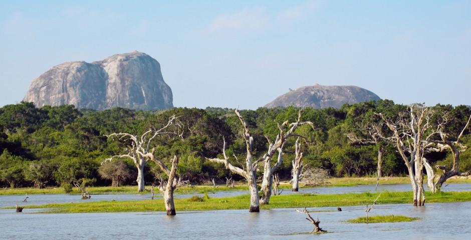 Faszinierendes Sri Lanka