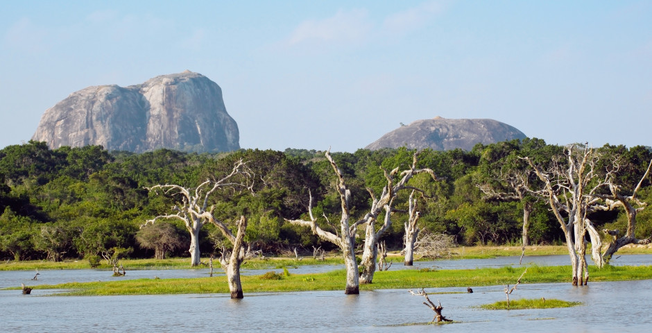 Fascinant Sri Lanka