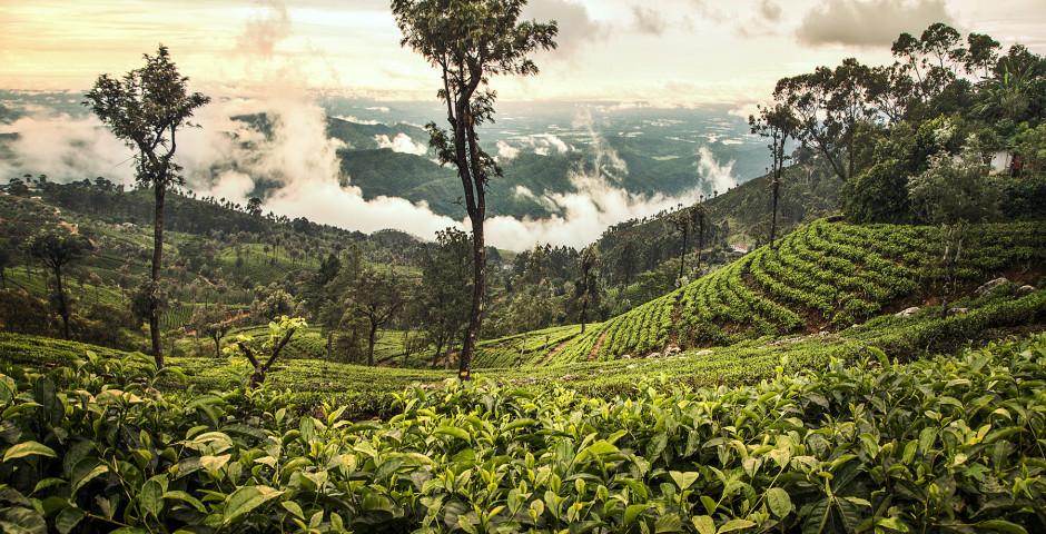 Tout le Sri Lanka