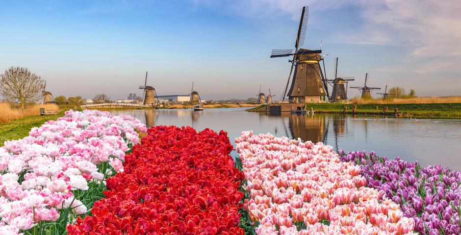 Kinderdijk Village, Rotterdam