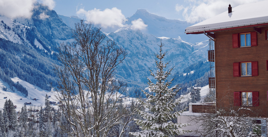 Hôtel Huldi - forfait ski