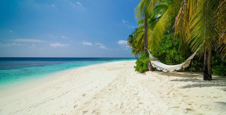Bild 22382276 - Mirihi Island Resort