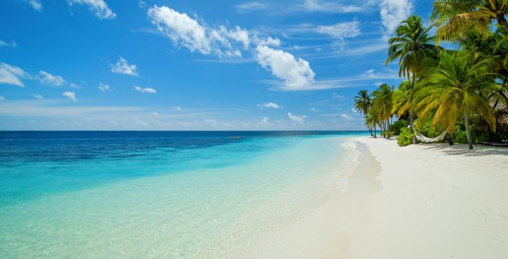 Bild 22382275 - Mirihi Island Resort