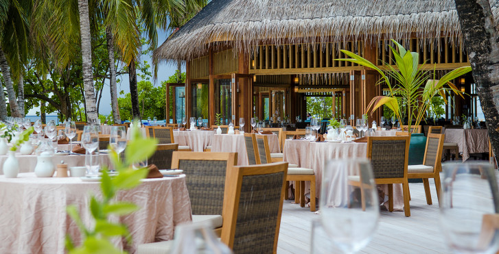 Bild 22382289 - Mirihi Island Resort