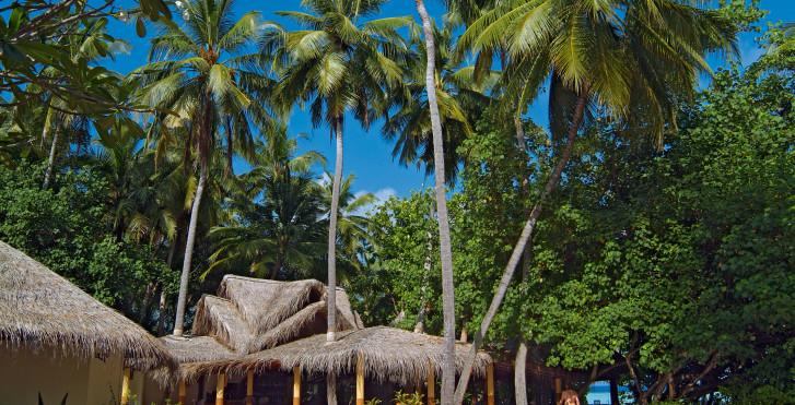 Image 7292188 - Biyadhoo Island Resort