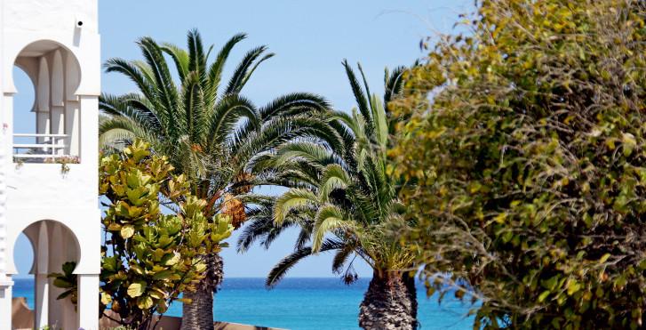 Image 7721193 - Sotavento Beach Club