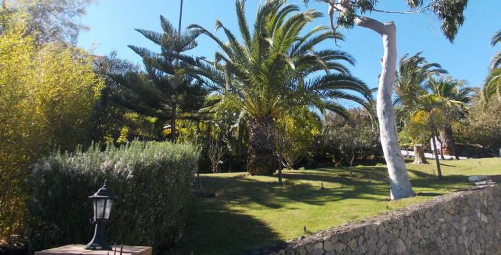 Bild 24438035 - Hotel La Palma Romantica