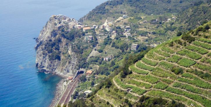 Bild 28425227 - Hotel Cinque Terre