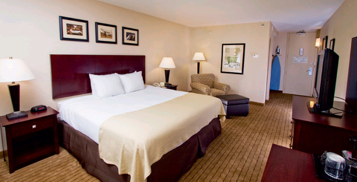 Image 7753600 - Holiday Inn LAX Airport