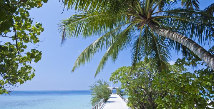 Bild 22361522 - Makunudu Island Resort