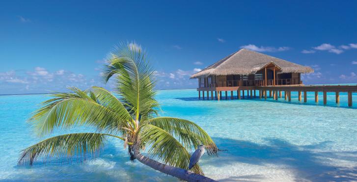 Image 7632956 - Medhufushi Island Resort