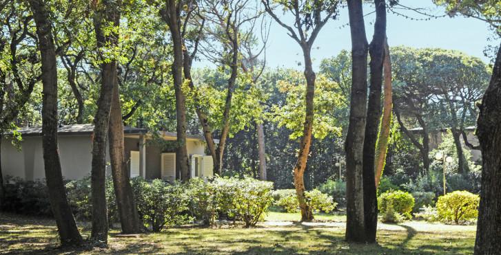 Image 25636728 - Riva degli Etruschi - bungalows