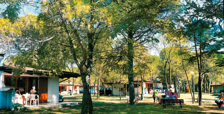 Bild 7815724 - Ferienanlage Belvedere Pineta