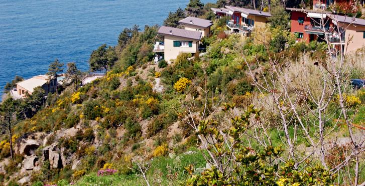 Bild 7838590 - Feriendorf La Francesca