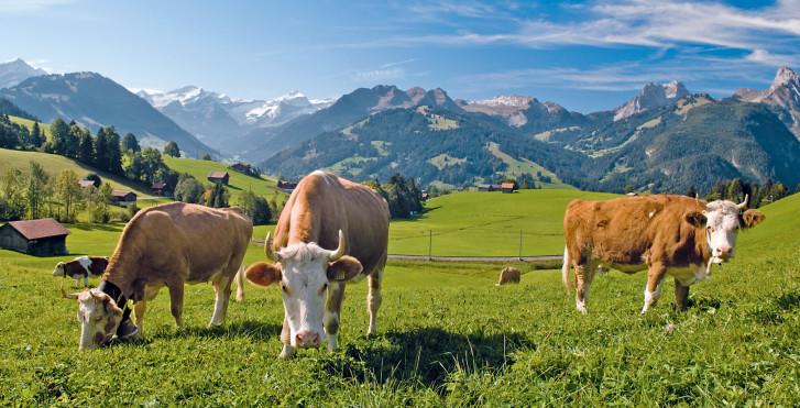 Schweiz, Gstaad