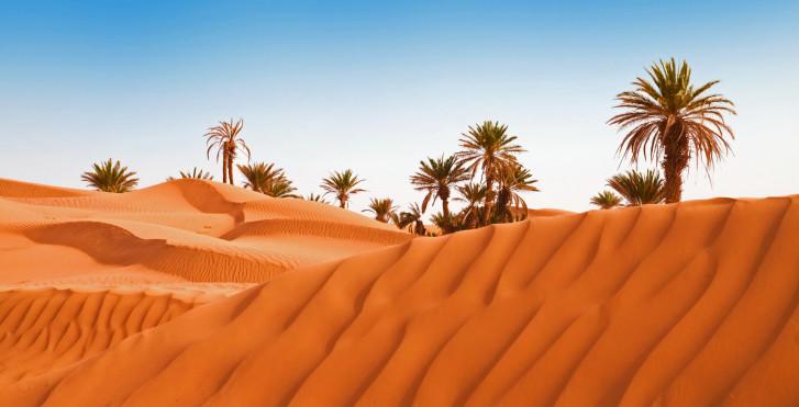 Le désert au déperat d'Agadir, Maroc