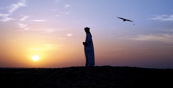 Coucher de soleil dans le désert, Émirats arabes unis