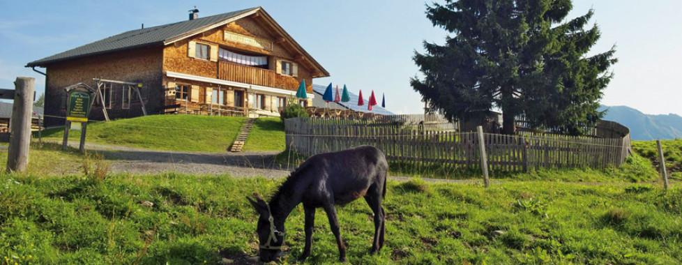 Hôtel Taleu - Forfait ski, Brandnertal - Vacances Migros