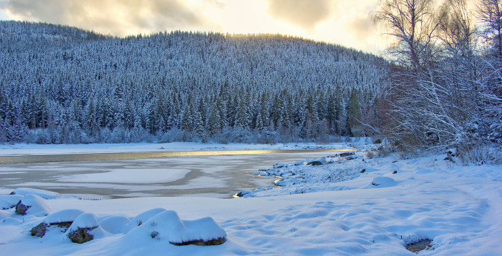 Schluchsee en hiver