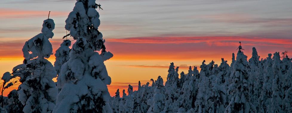 Lapland Hotel Ounasvaaran Chalets, Rovaniemi - Migros Ferien