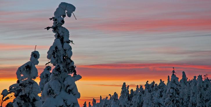 Été nordique, Rovaniemi, Laponie