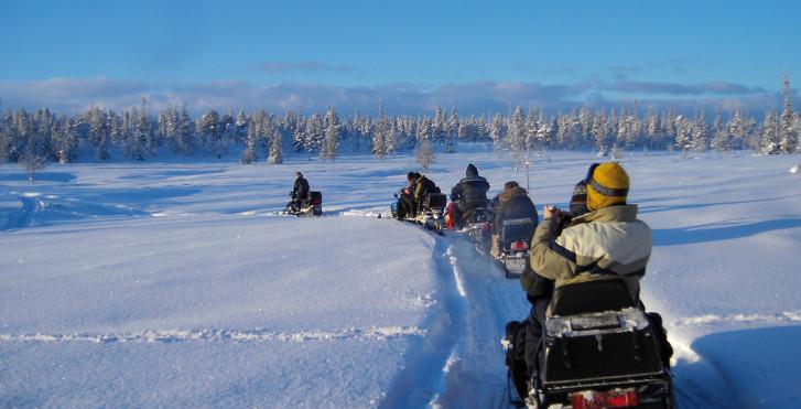 Schneemobil-Tour, Levi, Lappland