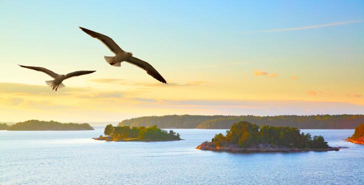 Stockholm Angebote Flug Und Hotel