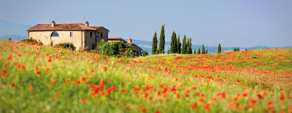 Complexe La Cecinella, Toscane du Sud - Vacances Migros