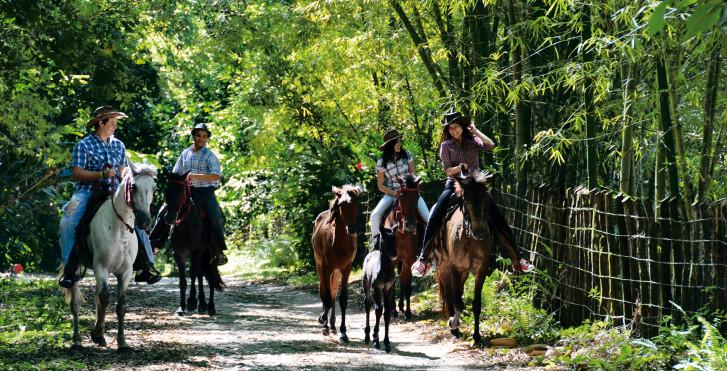 Vacances à cheval, Puerto Plata, République Dominicaine