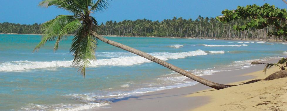 Grand Paradise Playa Dorada, Puerto Plata - Vacances Migros