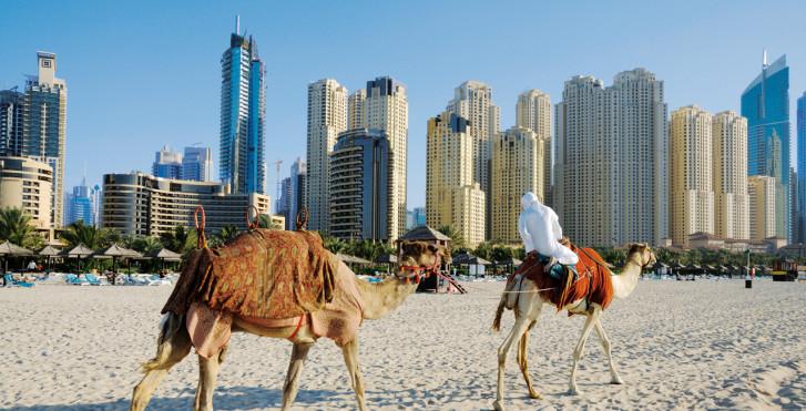 Kamelritt am Strand, Dubai